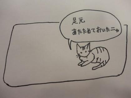 ☆☆入っている保険の内容って??保険サロン 刈谷店 ☆☆