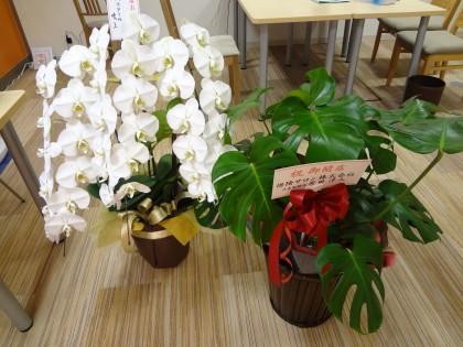 保険サロン名古屋吹上店 リニューアルオープンからもうすぐ2ヵ月☆