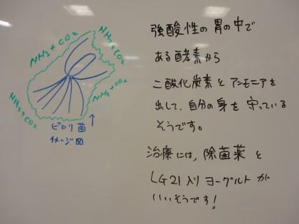 ☆ピロリ菌の除菌治療について 保険サロン刈谷店☆