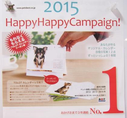 保険サロン名古屋守山店  『ペット保険ご加入でもれなくプレゼント♪』